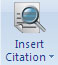 insert citation icon