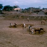 People working in the dirt in a rural village